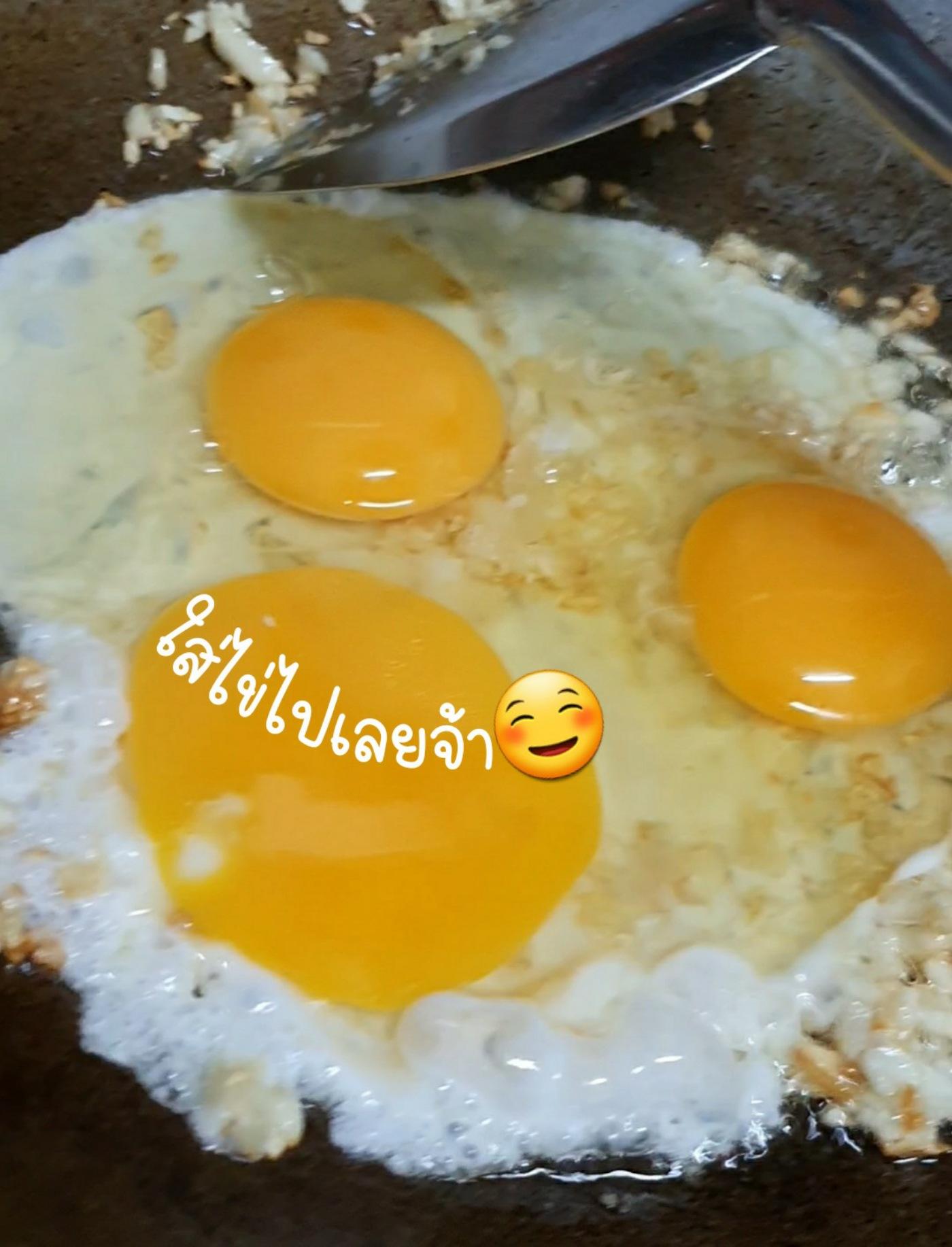 ใส่ไข่